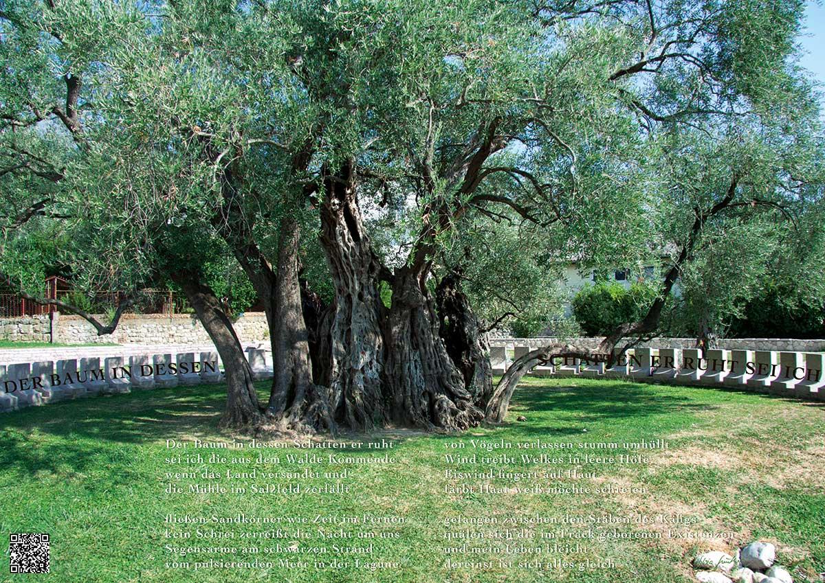 Soundpics: 18 Der Baum in dessen Schatten