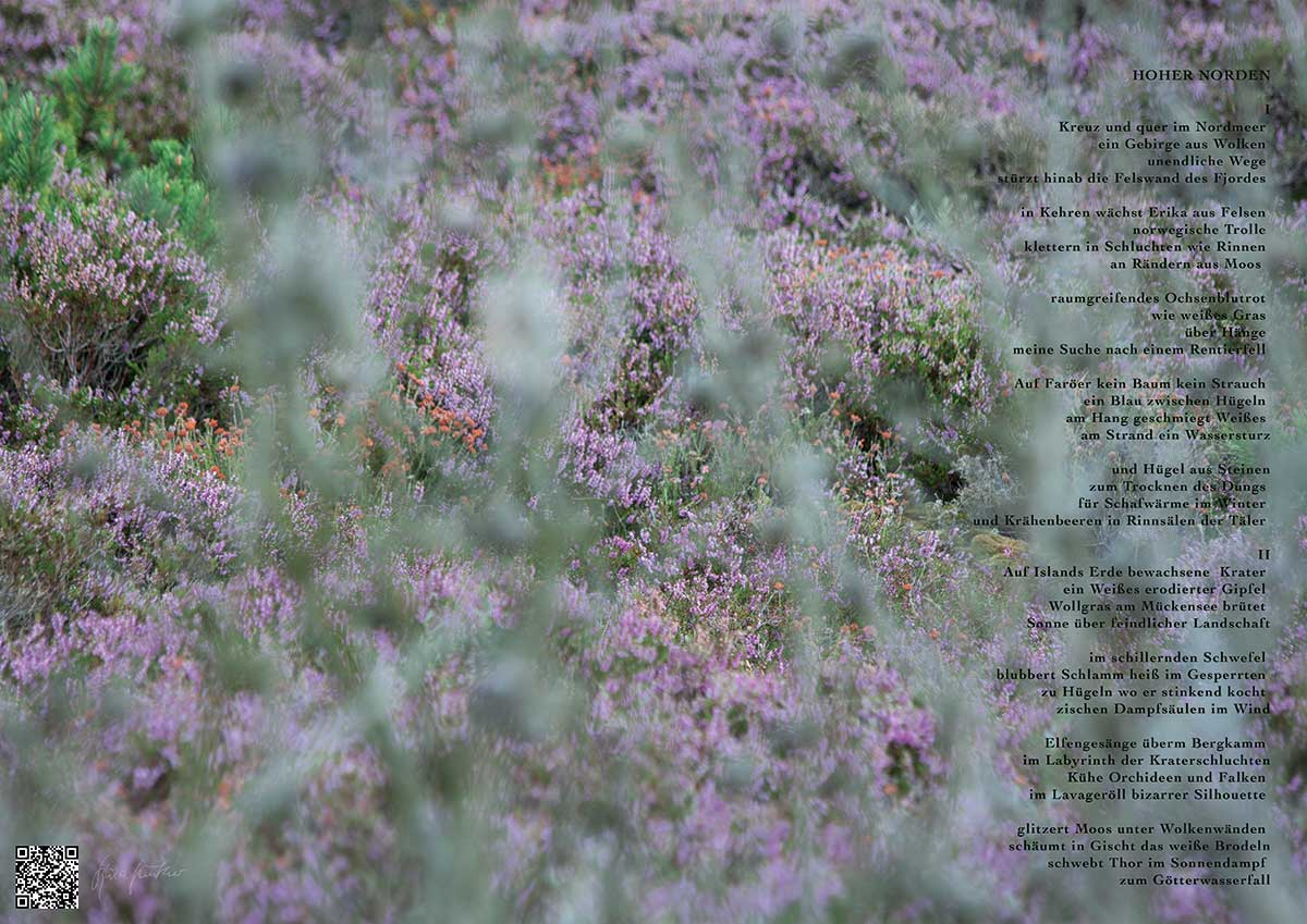 Soundpics: 39 Hoher Norden