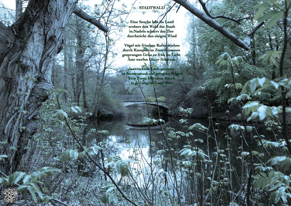 Soundpics: 73 Stadtwald