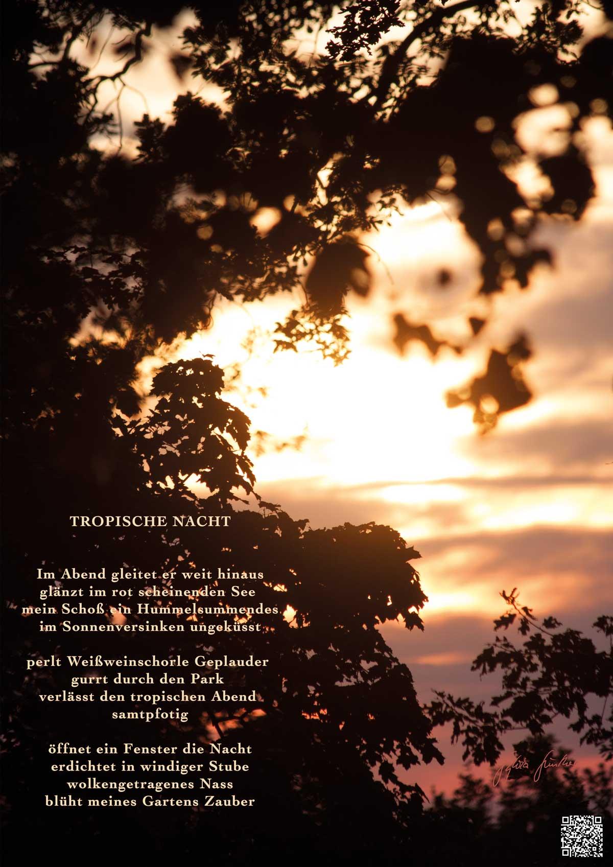 Soundpics: 78 Tropische Nacht